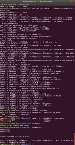 Vulkan_error