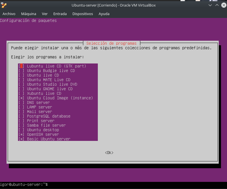 Install GUI on Ubuntu Server 18 04 Bionic Beaver